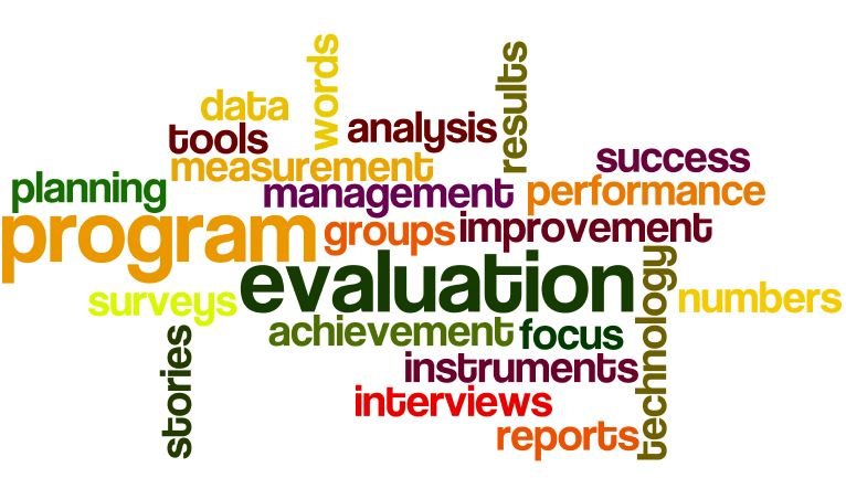 program-evaluation-wordle